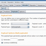 Burp Suite Tutorial – Repeat a request in a loop